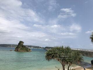 風景,海,空,屋外,湖,ビーチ,雲,青空,島,水面,海岸,沖縄,樹木,古宇利大橋,草木,日中
