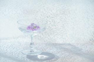 お花のデザートの写真・画像素材[4335888]
