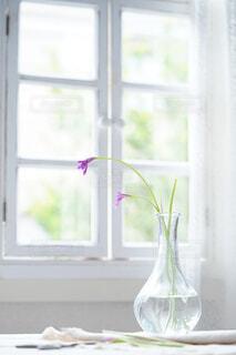夏の窓辺の写真・画像素材[4732065]