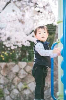 桜の公園で遊ぶ男の子の写真・画像素材[4314729]
