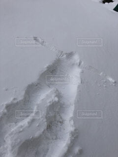 自然,雪,人型