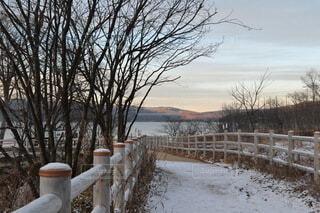 自然,風景,空,水面,北海道,樹木,阿寒湖