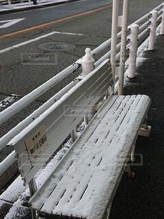 雪,屋外,癒し,通勤,寒い,早朝,ユーモア,ほっこり,サプライズ,バス停