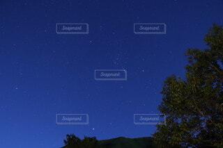 空,夜,夜空,屋外,星空,天体,青空,田舎,星,オリオン座,樹木,快晴,天体観測,夜中,天文