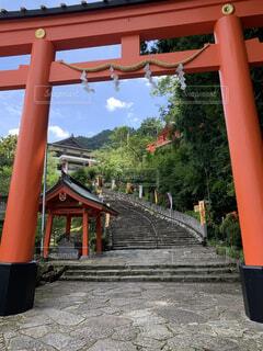 空,屋外,神社,階段,鳥居,樹木,地面,建築,草木