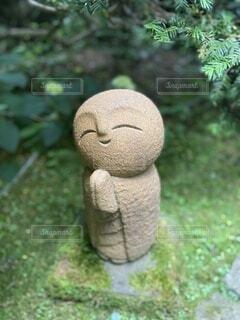 屋外,かわいい,草,樹木,癒し,笑顔,像,石,願い事