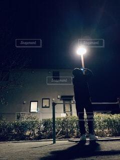 空,夜,屋外,暗い,樹木,明るい,点灯,映え