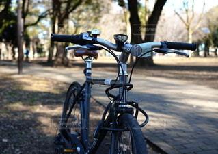 公園,自転車,屋外,駐車場,樹木,タイヤ,地面,家電,車両,ホイール,縁石,スポーツ用品,陸上車両,自転車のホイール