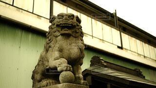 建物,神社,古い,旅行,狛犬,スナップ,彫刻,石像,獅子,質感