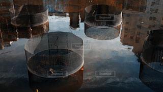 湖,水面,アート,反射,上野,モザイク,金属,不忍池,鉄かご
