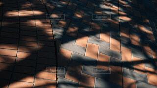 風景,建物,木漏れ日,明るい,対称,スクリーン ショット