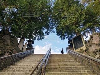 自然,階段,晴れ,青空,散歩,未来,お寺,秋晴れ