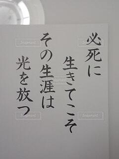テキスト、文字の写真・画像素材[4252192]