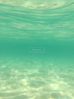 水の中からの写真・画像素材[4080708]