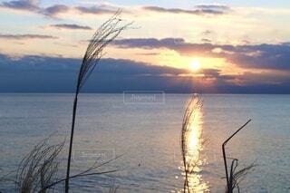 自然,風景,海,空,秋,冬,夕日,屋外,太陽,雲,青,夕焼け,夕暮れ,水面,海岸,反射,オレンジ,ススキ,キラキラ,黄昏,夕陽,地平線,日の出,橙,景観,草木,輝き,西日,黄昏時,きらきら,フォトジェニック,すすき