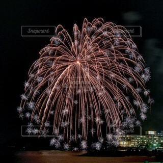 空の花火の写真・画像素材[4081436]