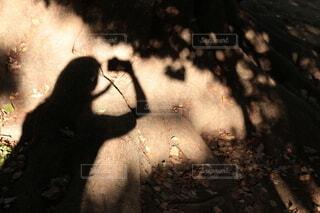影の写真・画像素材[4105347]