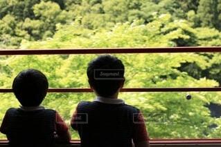 子ども,風景,窓,影,樹木,人物,人,車窓,嵐山,男の子,トロッコ,フォトジェニック,嵐山トロッコ,嵐山トロッコ列車