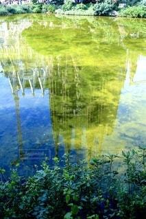 自然,風景,屋外,湖,緑,青,水面,池,景色,反射,草,樹木,サグラダファミリア,草木,穴場