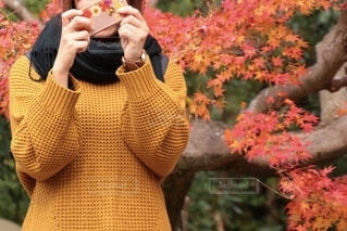 女性,自然,風景,花,秋,紅葉,アクセサリー,屋外,マフラー,散歩,葉,影,樹木,人物,人,携帯,ライフスタイル,草木,散策,着衣