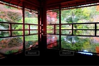 建物,秋,紅葉,屋内,緑,赤,窓,鏡,樹木