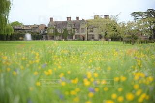 花畑とマナーハウス屋敷の写真・画像素材[4385443]