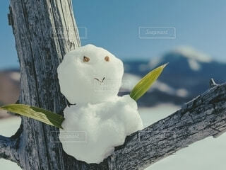木の枝にとまる雪だるまの写真・画像素材[4203305]