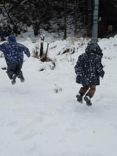 雪によろこび飛び跳ねる子どもの写真・画像素材[4181259]