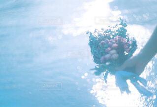 ドライフラワーをもって海への写真・画像素材[4101001]