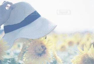 ひまわりと麦わら帽子の写真・画像素材[4320237]