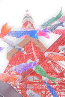 鯉のぼりと東京タワーの写真・画像素材[4408616]