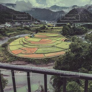 和歌山県 棚田の写真・画像素材[4088481]