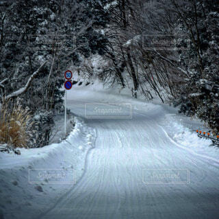 冬,雪,運動,ウィンタースポーツ