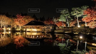 日本庭園のライトアップ夜景の写真・画像素材[4093051]