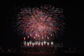 夜空の花火の写真・画像素材[1310493]