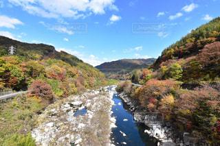 山の中腹に木と岩の多い川の写真・画像素材[1591112]