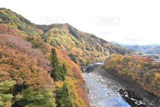 紅葉,カラフル,木曽福島