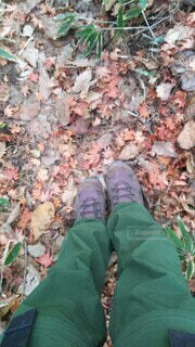 枯葉と登山服の足元の写真・画像素材[4196452]