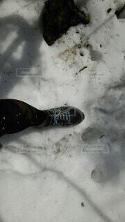 雪の日のトレランの足元の写真・画像素材[4196454]
