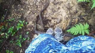 木の根と足元の写真・画像素材[4196494]