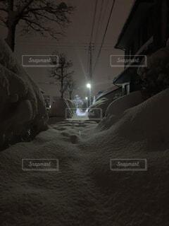 自然,冬,夜,雪,屋外,樹木,冷たい,日中,真冬の夜