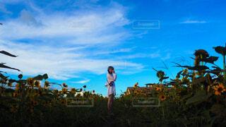 向日葵と青空とカメラを持った私。の写真・画像素材[4526458]