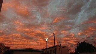屋外,日の出,西の空