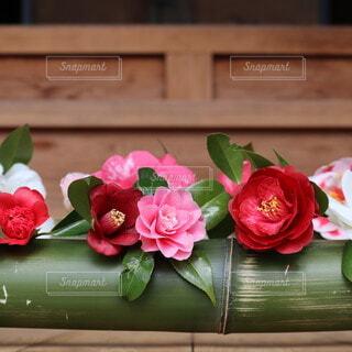 花,屋内,花瓶,椿,草木,竹籠,もてなし