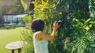 恋人,風景,夏,カメラ,屋外,撮影,草,人物,人,トロピカル,屋上,休日,デート,サマー