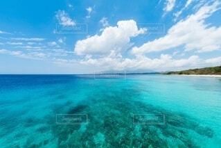 サンゴ礁のある青い海の写真・画像素材[4150220]