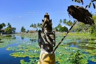 水の体の隣に立っている男の写真・画像素材[4150245]
