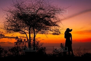 夕日の前に立っている人の写真・画像素材[4150258]