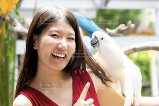 鳥を抱いた女性の写真・画像素材[4157372]