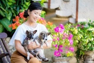 犬と一緒にベンチに座っている女性の写真・画像素材[4159845]
